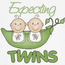 Om swanger te wees met 'n tweeling (2/6)
