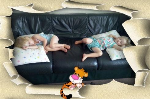 Lala & Bekkie slaap baie lekker